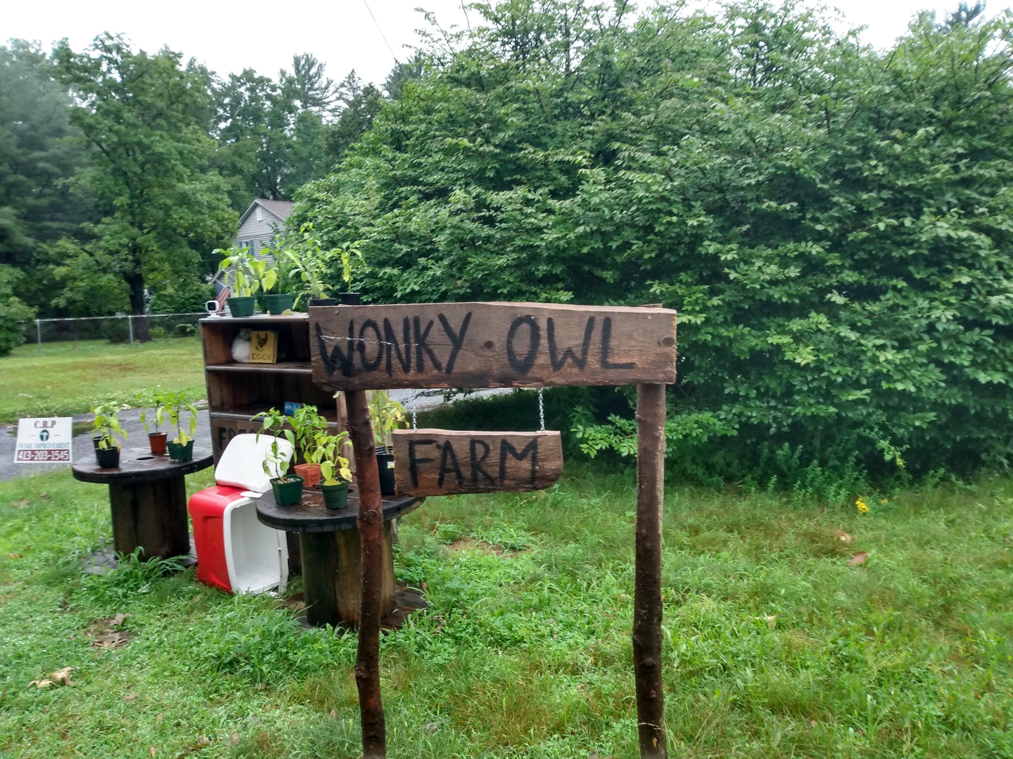 Wonky Owl Farm sign