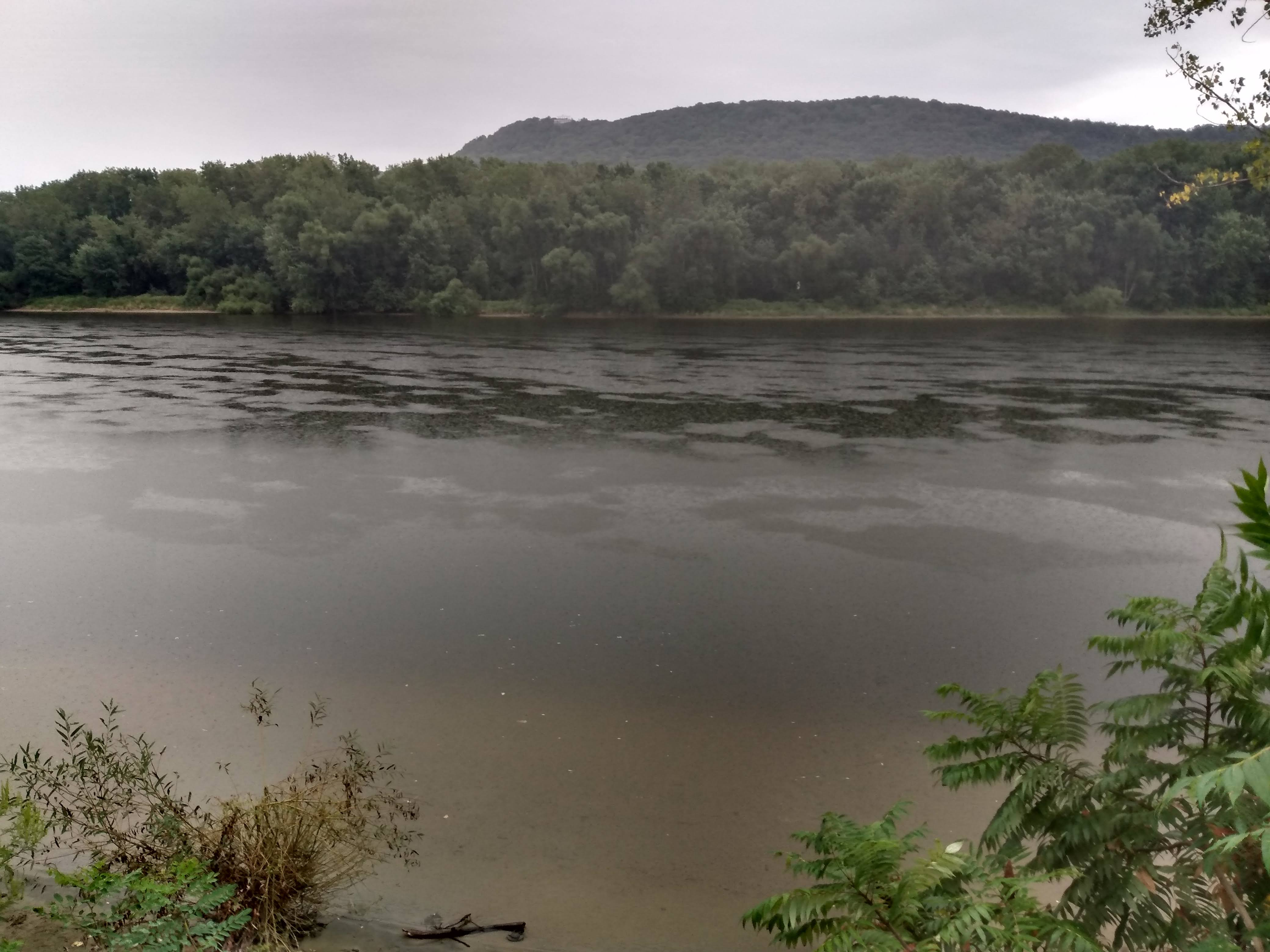 Rain patterns on the Connecticut River